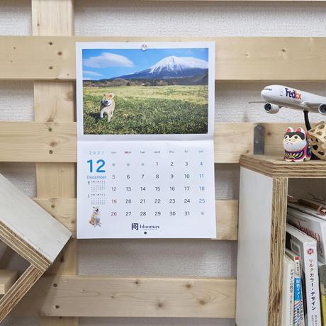 名入れ壁掛けカレンダー100部セット