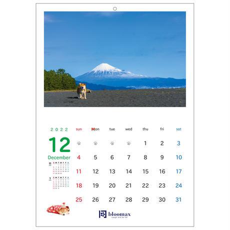 名入れ壁掛けカレンダー20部セット