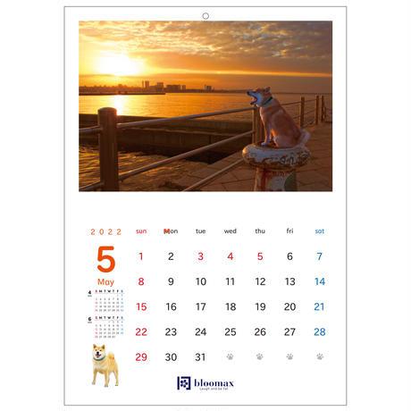 名入れ壁掛けカレンダー10部セット