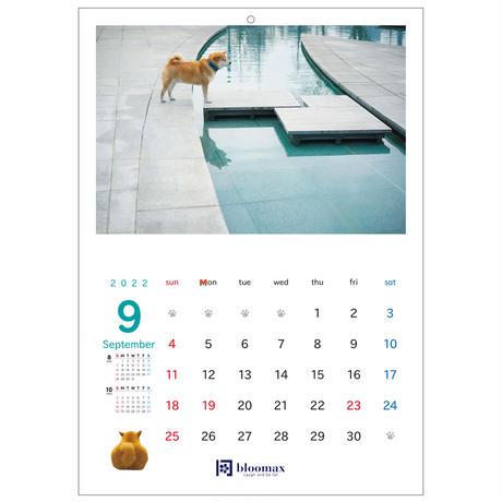 名入れ壁掛けカレンダー40部セット