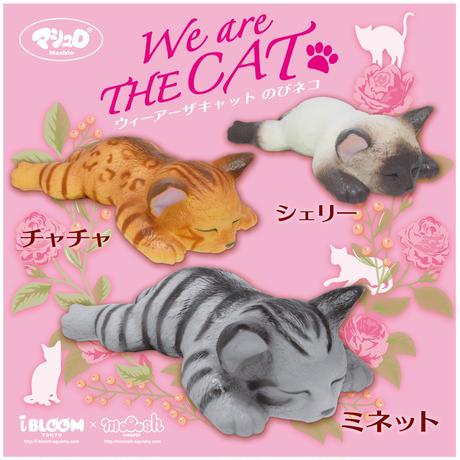 ウィーアーザキャットのびネコ