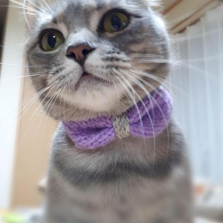 Ribbon Tie(リボンタイ)