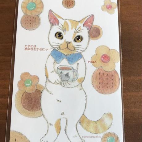 猫柳堂さんのチャリティーポストカード 2枚組