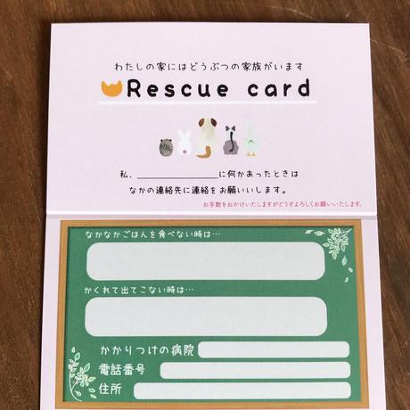 ねこ型 本革カードケース お好きなカード付き