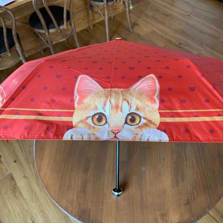 情熱のレッド!フェリシモ猫部の晴雨兼用折り畳み傘