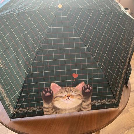 瞳に涼やかなグリーンを!フェリシモ猫部の晴雨兼用折り畳み傘
