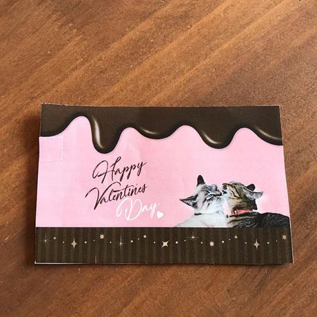 valentine 山盛りキャットタンミルクチョコレート