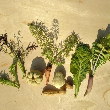 セミオーダー野菜セットS (1ヶ月定期便)