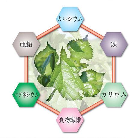 諸木の桑抹茶(袋入・粉茶)100g