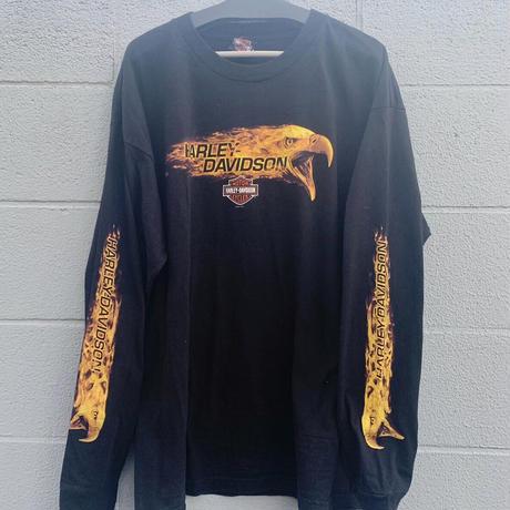 Harley-Davidson fire long sleeve T-shirt/ハーレーファイヤーロンT