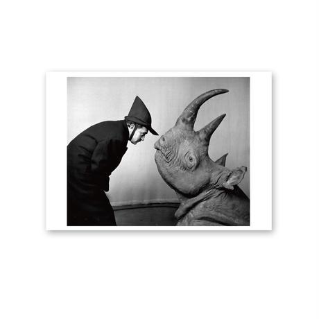 ポストカード/サルバドール・ダリ、フィリップ・ハルスマン《ダリ、1956年、CBSモーニングショー》