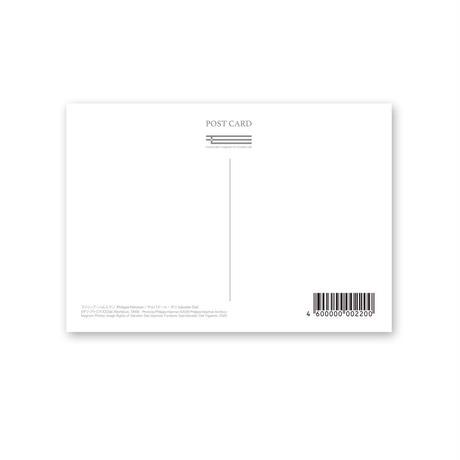 ポストカード/サルバドール・ダリ、フィリップ・ハルスマン《ダリ・アトミクス》