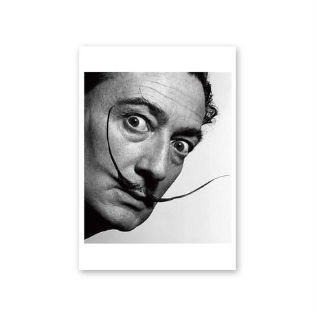 ポストカード/サルバドール・ダリ、フィリップ・ハルスマン《サルバドール・ダリ》
