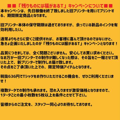 【さらに値下げ】残りものには福があるTシャツ TRUSS SFT-106【5枚以上で1枚650円】