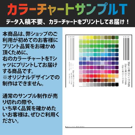 【入稿不要】カラーチャートサンプルTシャツ【Printstar 00085-CVT / DM便送料込み】