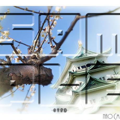 名古屋城 ≪風景・フォトアート≫