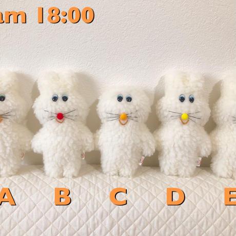 はじめてのプクプク 【team 18:00】
