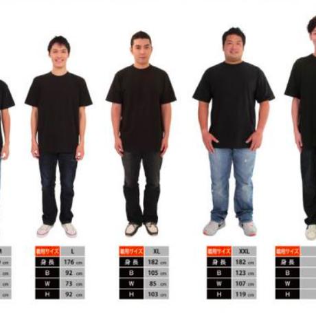 Ash x Black T-shirt