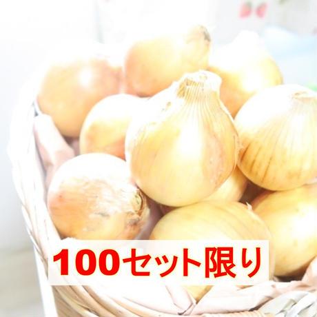 京都産有機玉ねぎ 4キロ (料理フォトコンテスト)