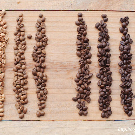 10/07(土)<初心者コース>自分好みのコーヒー豆と巡り会う