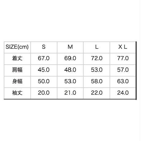 5ca6ddfbe233da6fa63ada32