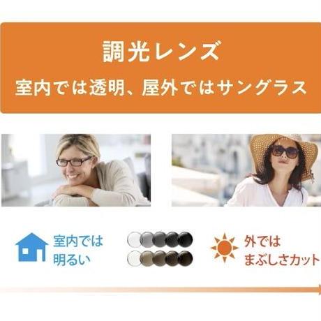 BLACK FLYS - FLY CLUBMAN - BLACK/GREY - PHOTOCHROMIC (調光レンズ)