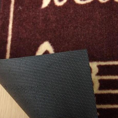 猫柄 玄関マット/フロアマット 【約40×60cm】 長方形 洗える 屋内 屋外共用 〔入口 ポーチ テラス〕