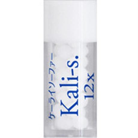 ケーライソーファー(Kali-s.) 12x