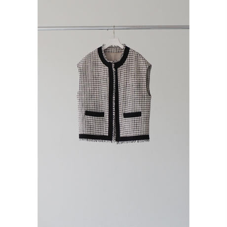 Novel Tweed Vest