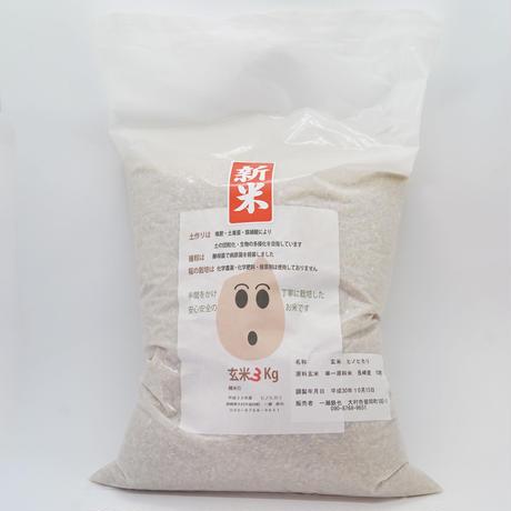 玄米3kg(化学農薬・化学肥料・除草剤不使用)