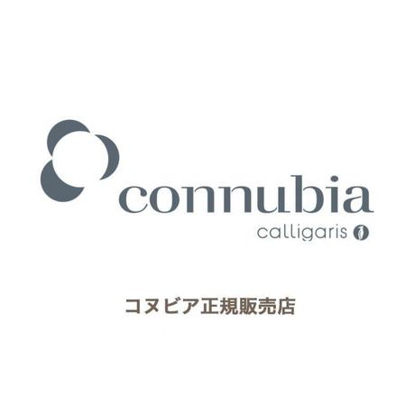 コヌビア ダイニングチェア L'EAU ロゥ 2脚セット connubia カリガリス