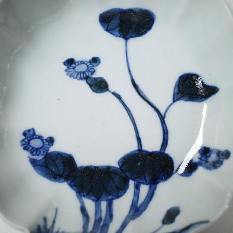 染付 秋海棠図なます皿 ②