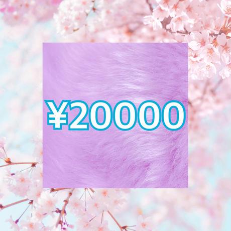 【¥20000】73ランジェリーお楽しみセット