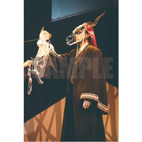 """Fセット「老いた竜と猫の国:舞台写真セット」「THE ANCIENT MAGUS' BRIDE""""THE STAGE(2020):Stage photo set』"""