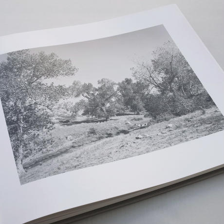 Robert Adams / From the Missouri West