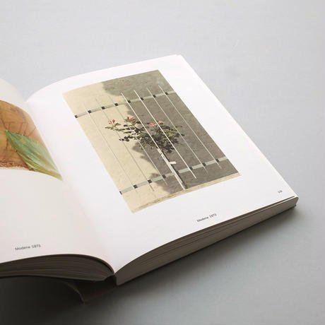 Luigi Ghirri /The Map and the Territory