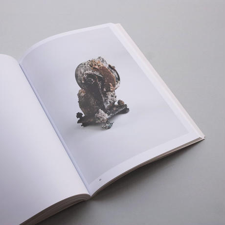 Sema Bekirovic / Reading By Osmosis - Nature Interprets Man