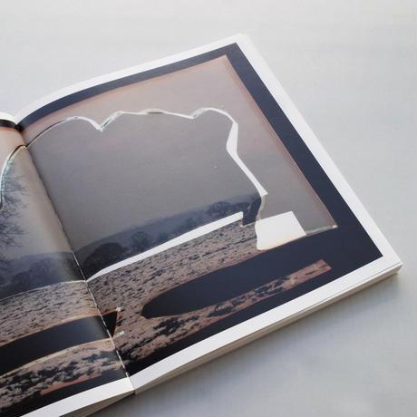 Dafna Talmor / Constructed Landscapes