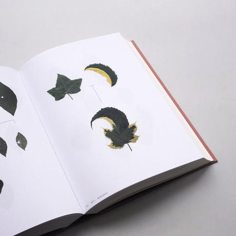 Anne Geene / Book Of Plants