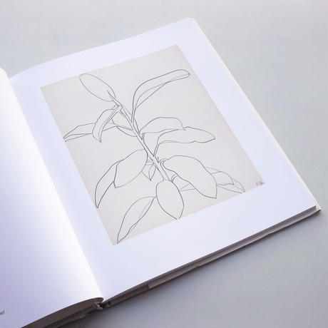 【片桐さま専用】Ellsworth Kelly / Plant Drawings