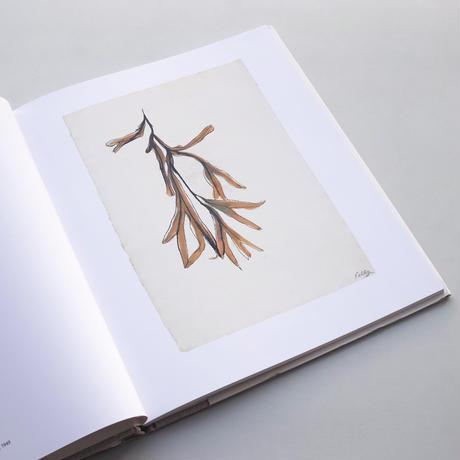 【Last Copies】Ellsworth Kelly / Plant Drawings