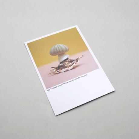 Every Mushroom is a Good Mushroom