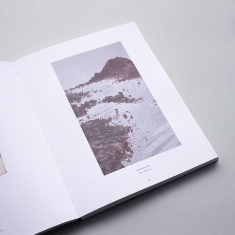 Luc Tuymans / La Pelle