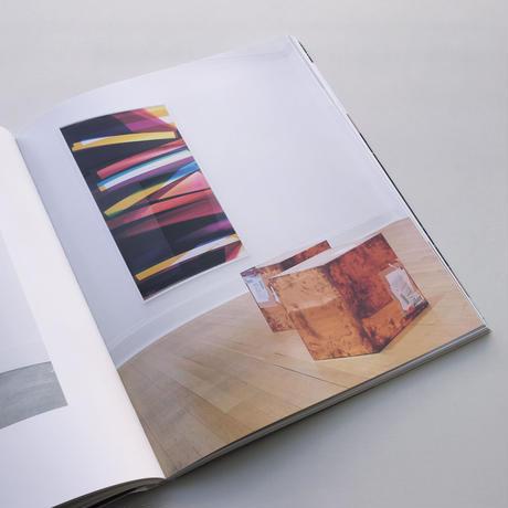 Walead Beshty / Natural Histories
