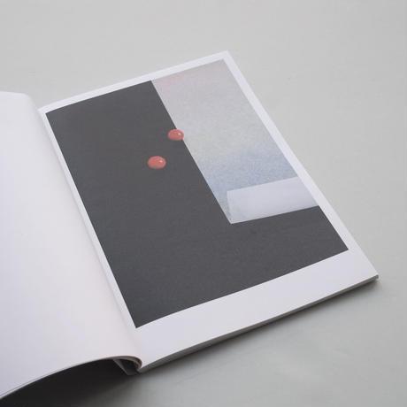副島美樹(Miki Soejima) / The Passenger's Present