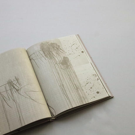 Jeroen Lutters / Cy Twombly's Quattro Stagioni. Studies In Art-Based Learning