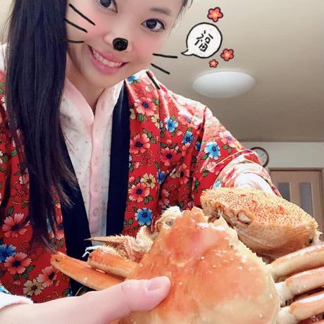 古屋ひろこ ハロウィンライブ!お気持ーtip  ¥500