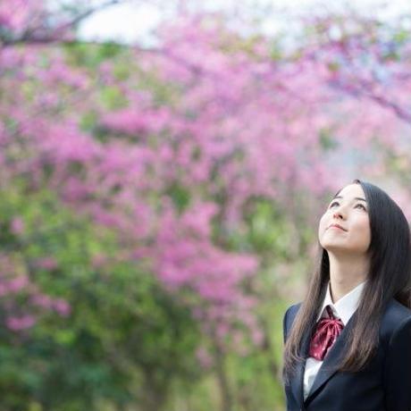 """大学生が高校生に大学受験を教える""""ダイカテ""""(非会員)"""