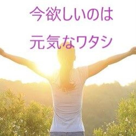 【定期便】選べるプラセンタ2個セット