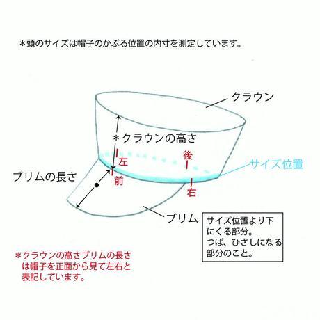 SBH-09  souffle cas